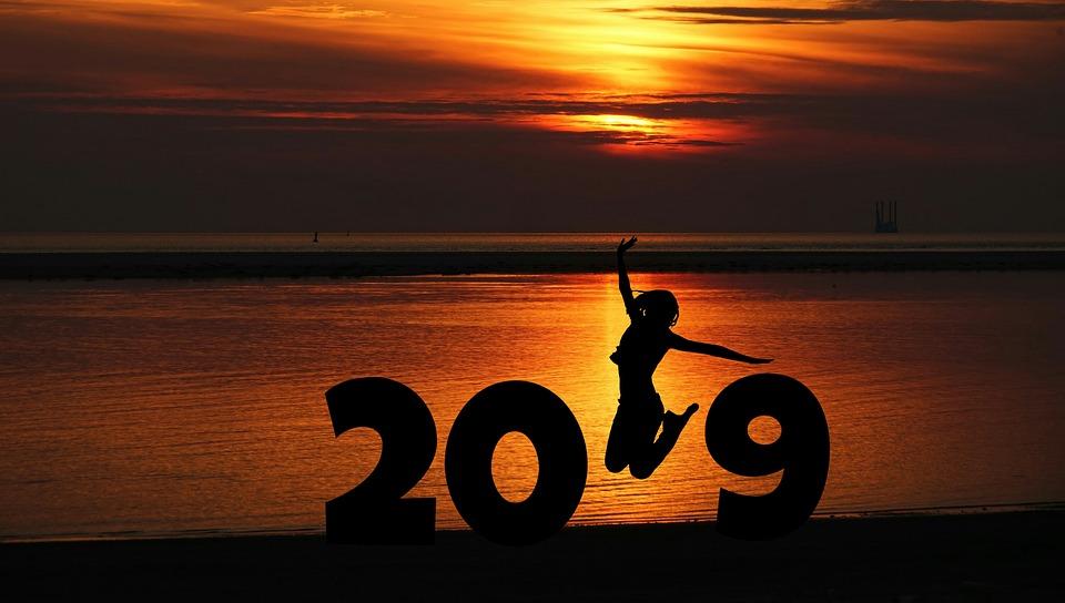 Orion Menuiseries vous souhaite une excellente année 2019