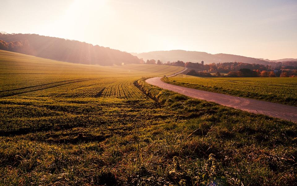 Achat de terrain : ce à quoi il faut penser