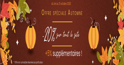 promotion octobre 2020